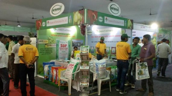Stall Exhibition Event : Exhibition event madiha management india pvt ltd